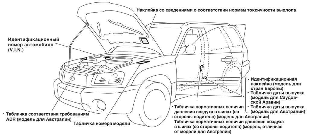 Чтобы наверняка узнать марку кузова конкретного автомобиля, можно посмотреть на идентификационный ярлык.