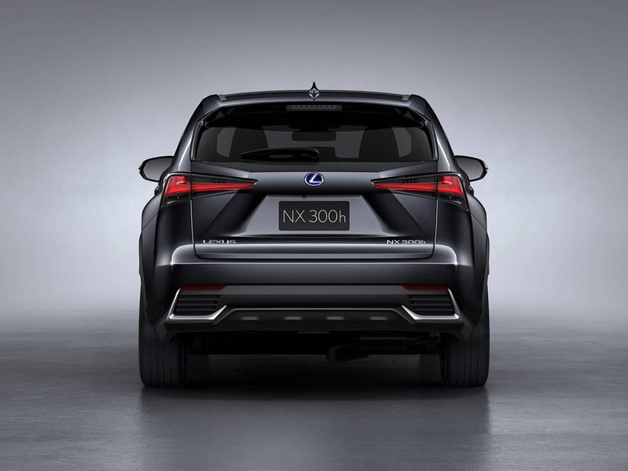Рис. 2. Lexus NX, вид сзади.